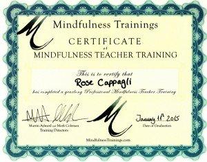 Diplôme mindfulness reduit